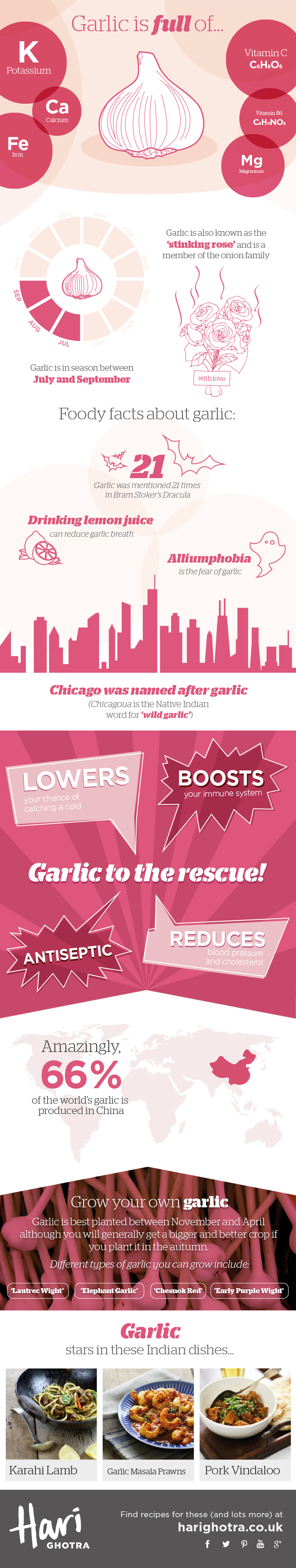 Garlic Infographic showing the health benefits of Garlic