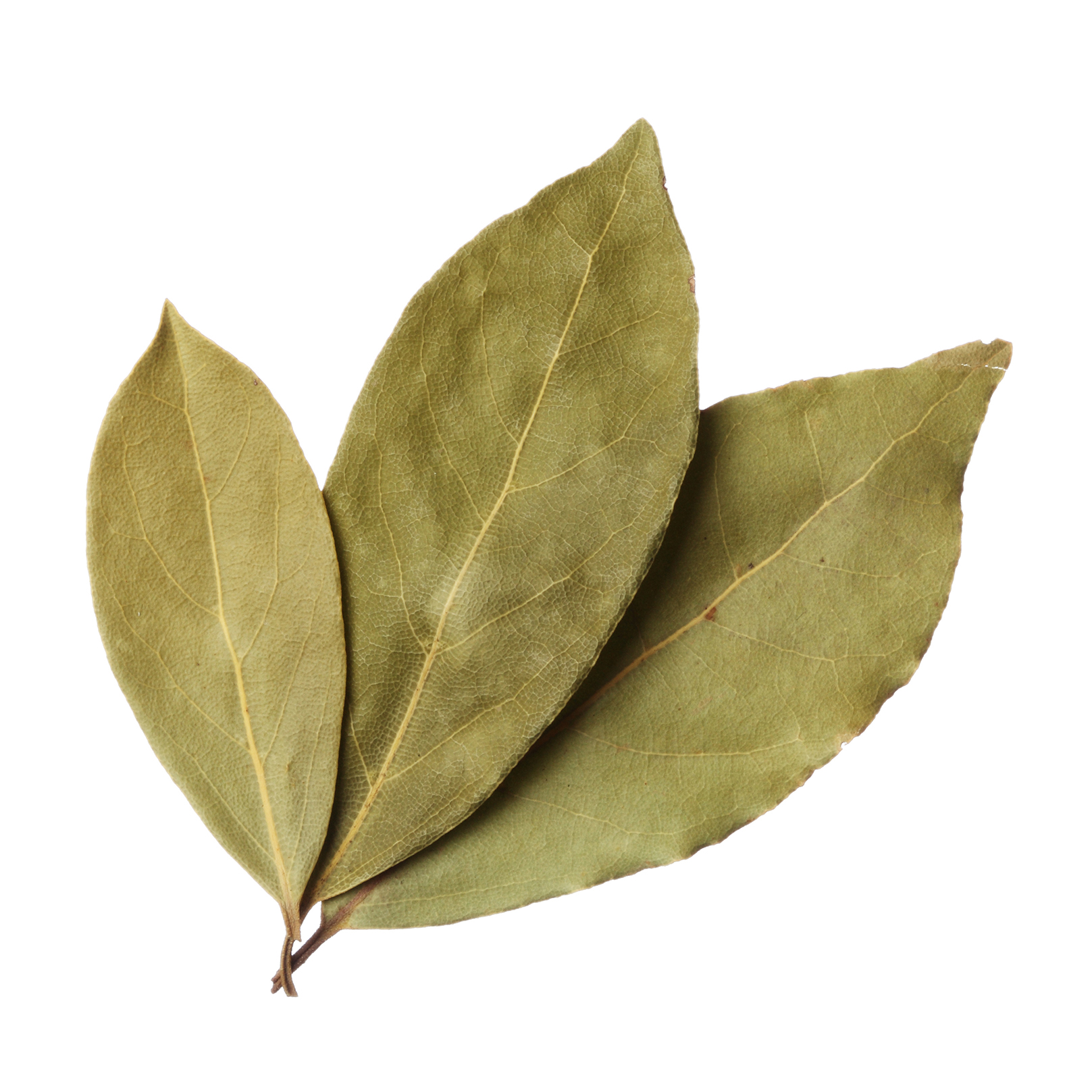 Spices - Cook bay leaves ...