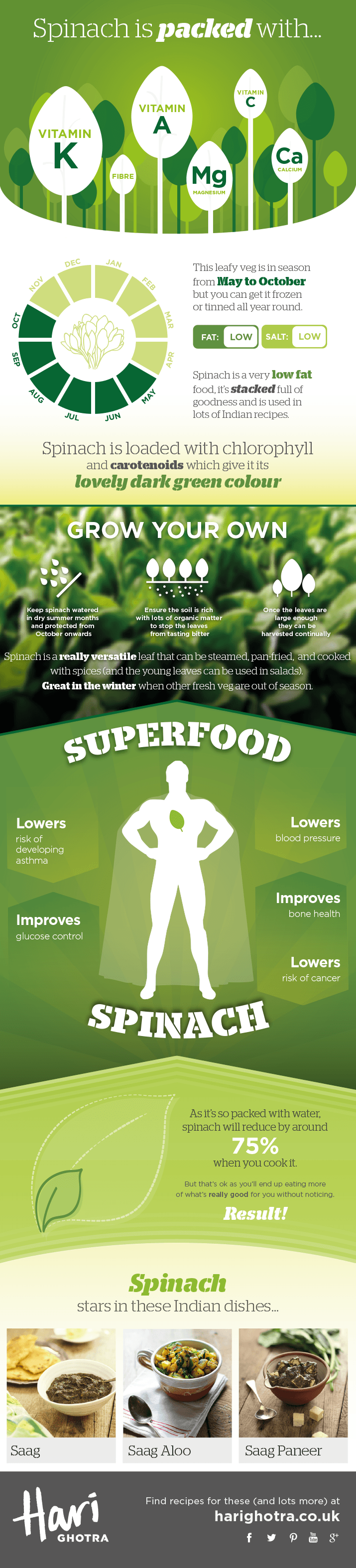 Spinach Infographic showing the health benefits of Spinach