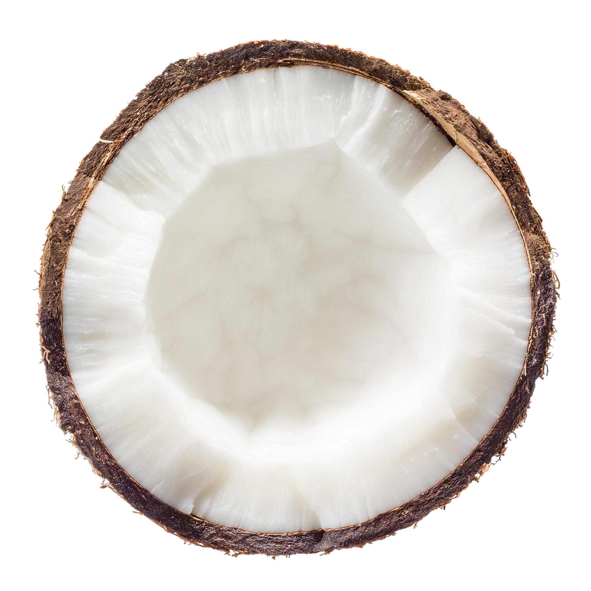 Coconut Flesh