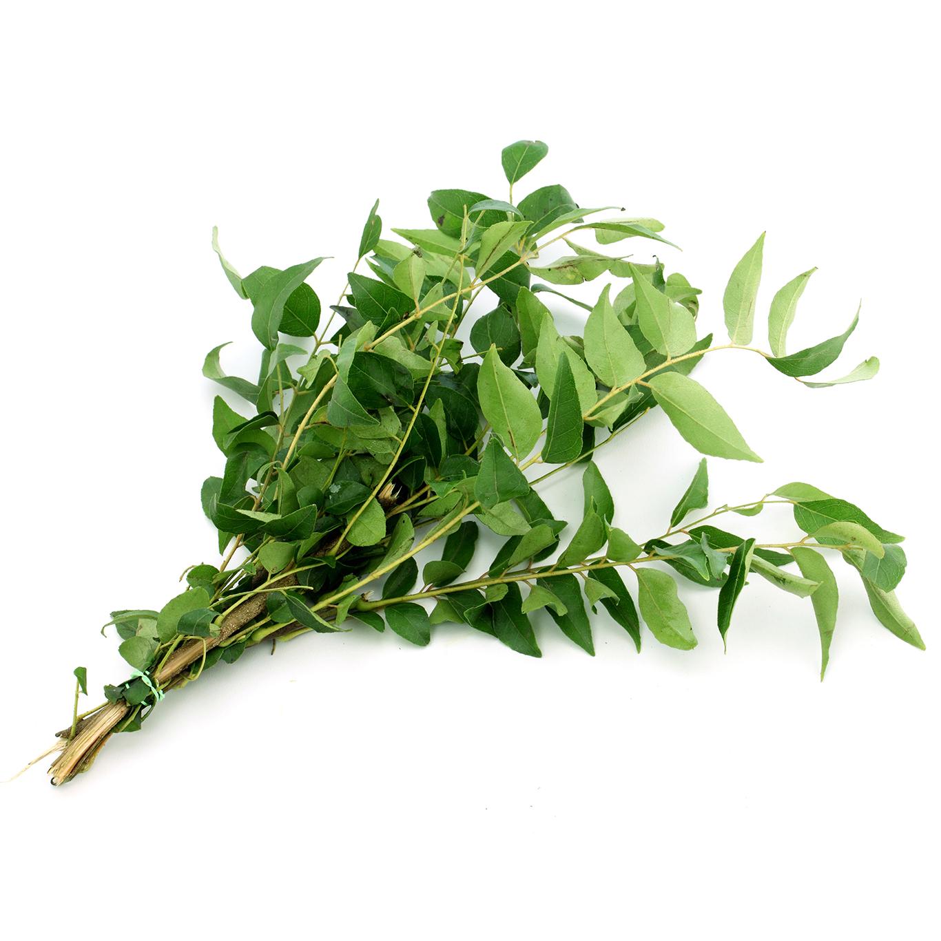 Curry Leaves (Karipatha)