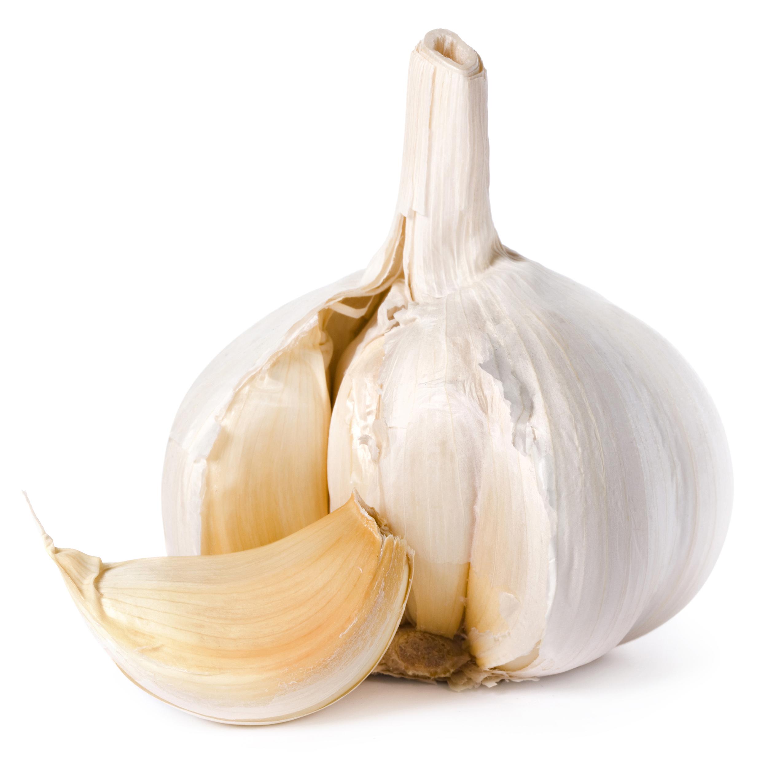 Garlic (Lasan)