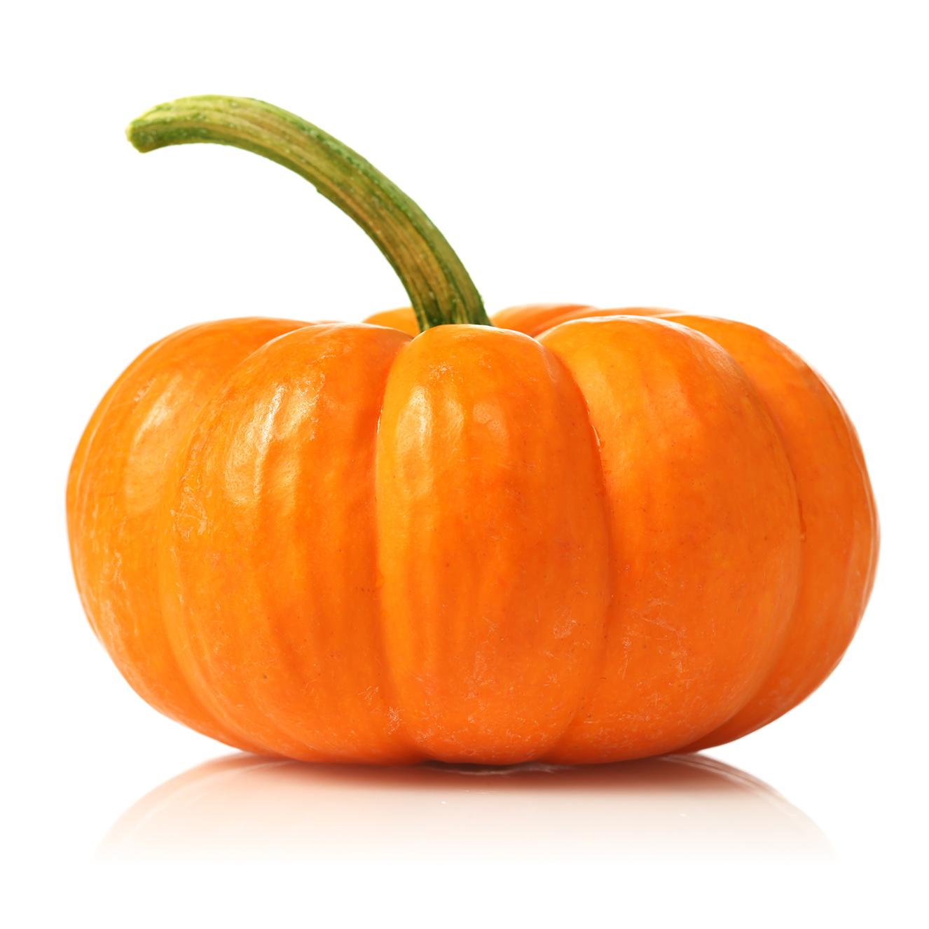 Pumpkin (Kuddu)